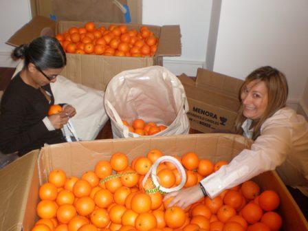 L(a)titudes - Oranges in Boxes