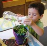 Watering plants during intentional play